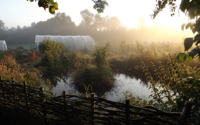 Permaculture weekend workshop 5-6 September
