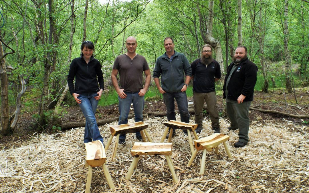 Make a stool from a log – 30 Sept 2017
