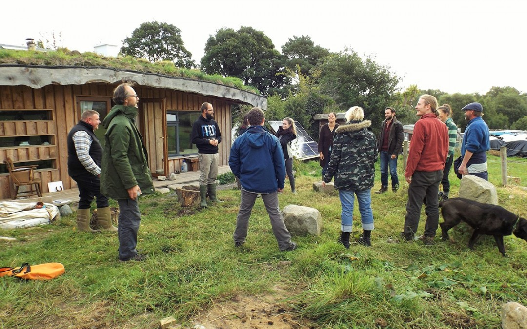 A weekend of permaculture