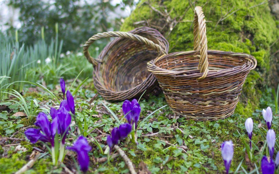 2 Day basket making course – 22-23 October