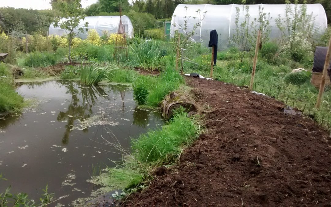 Improving our water treatment and storage