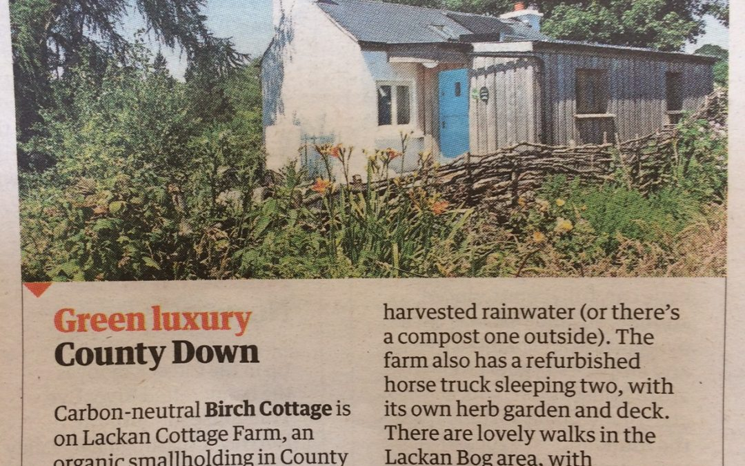 Birch Cottage makes the Guardian Top 15 Off Grid places to stay